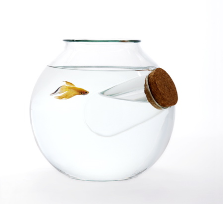 fishbowl-chill-out-warm-up