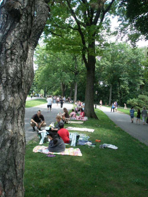 Shakespeare in park_line