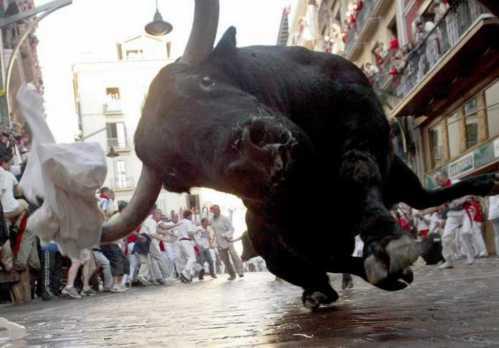running of bulls