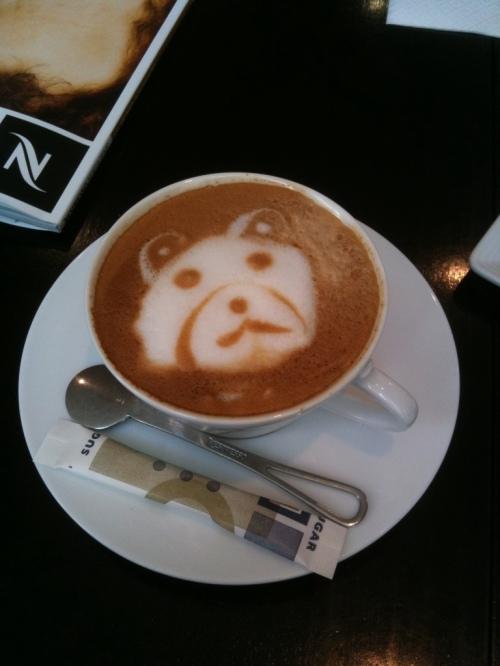 teddy froth.jpg