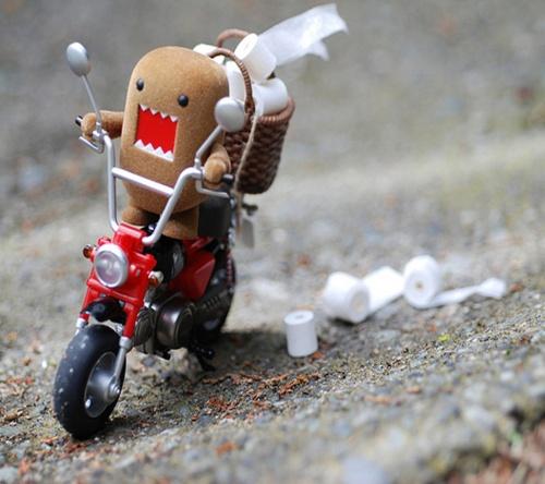 Domo Racer_TP